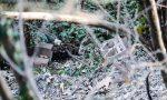 Rifiuti in mezzo al bosco a San Mauro, i cittadini denunciano la situazione alla Polizia