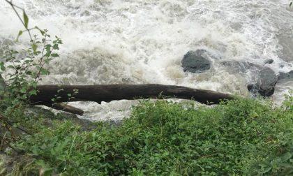 Cade nelle acque del Po, gli agenti della Polizia locale salvano una donna