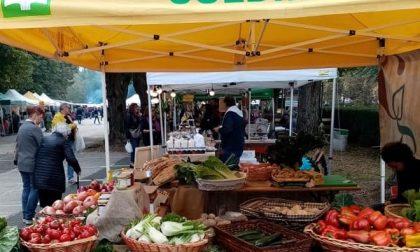 Il mercato di Campagna amica arriva sull'isola pedonale di via Roma