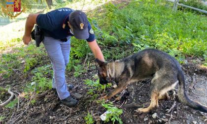 Aurora, continuano i controlli della Polizia di Stato: due arresti per spaccio di droga