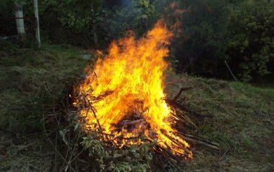 Scatta il divieto di bruciare materiale vegetale