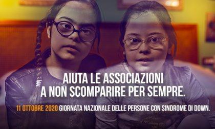 Giornata nazionale delle persone con la Sindrome di Down, l'appuntamento in piazza IL VIDEOINVITO