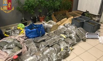 Rifornivano di droga San Salvario: 7 persone arrestate