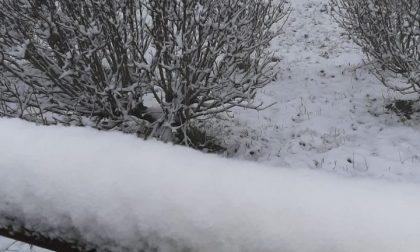In Piemonte prevista neve anche a bassa quota