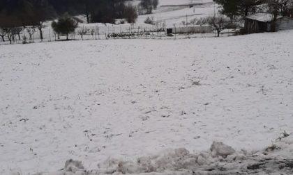 E' tornata la neve in collina
