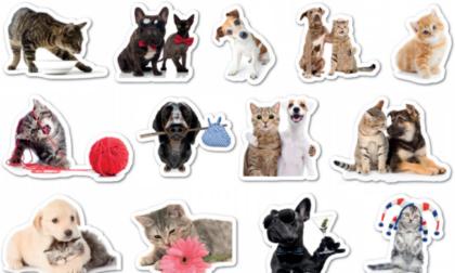 Originali stickers in regalo con La Nuova Periferia di Settimo