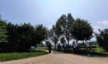 Quasi 4mila piante per la creazione di due nuovi boschi