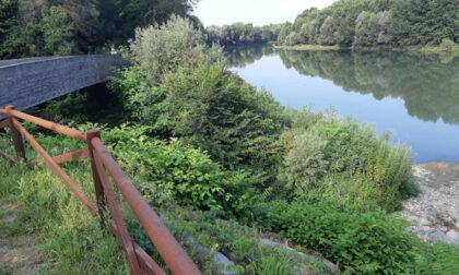 Parco del Meisino: dal 19 agosto 2021 chiusa la passerella ciclopedonale  Alex Langer