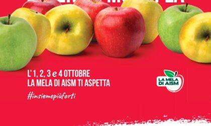 Da venerdì 1 a lunedì 4 ottobre 2021 torna in tutta Italia la mela di Aism