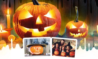 Per Halloween realizziamo una zucca...bella da paura!